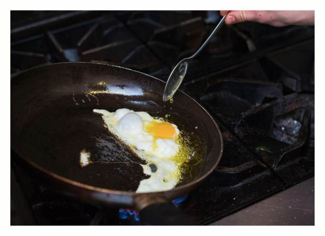 frying egg (Copy)